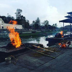 himalayagorilla_spiritual_tour (18)