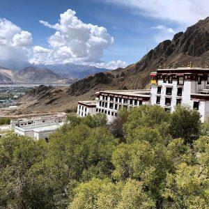 himalayangoirlla_drepung_monastery (3)