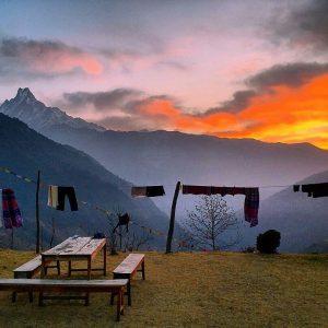 himalayangorilla_Annapurna_BAse_Camp_Trek (16)