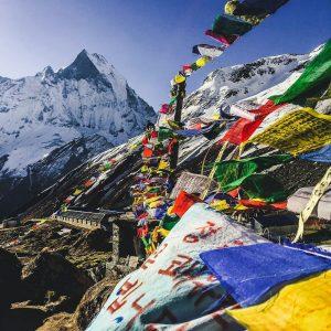 himalayangorilla_Annapurna_BAse_Camp_Trek (8)